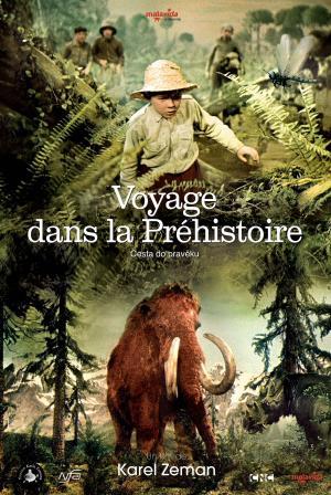 Voyage dans la prehistoire malavida films - Film porte avion voyage dans le temps ...
